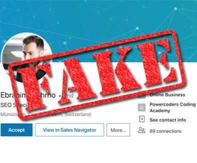 LinkedIn Networking: Unmasking the Deception