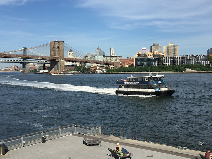 Brooklyn Bridge Park and the East River Ferry.