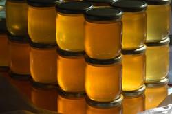 honey-4919959_1920