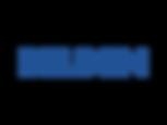 belden-4-logo.png