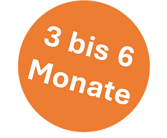 NMT_3_bis_6_Monate.png