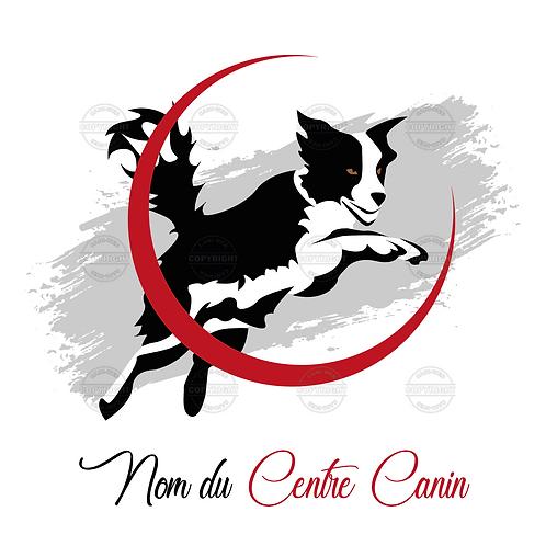 Logo centre canin - Agility