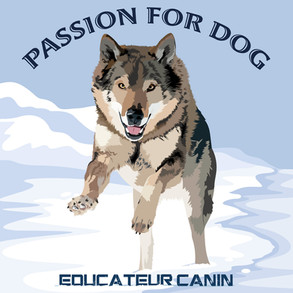 Passion For Dog