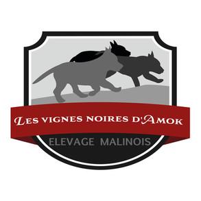 Les vignes noires d'Amok