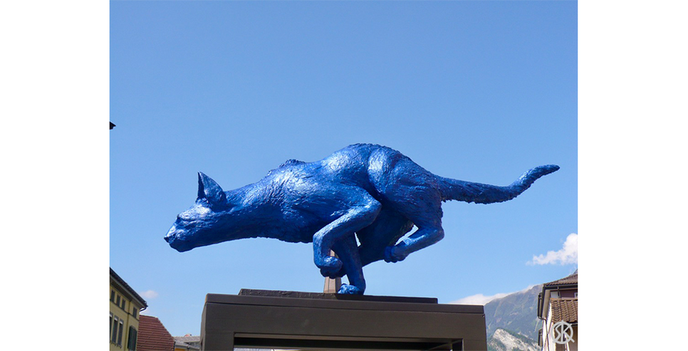 Gatto Grande bleu