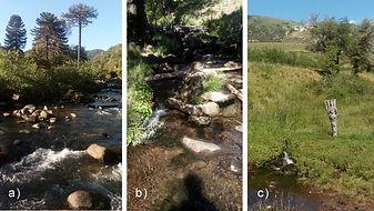 cursos de agua.jpg