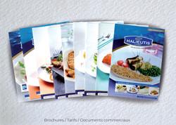 Idées Folles - Brochure Halieutis