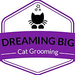 dreaming logo.jpg