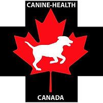canine health.jpg