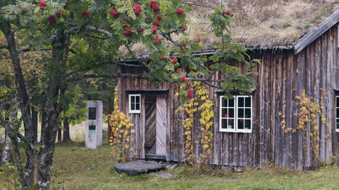 Photo: Orsoyla Haarberg