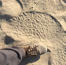 Elephant footprint
