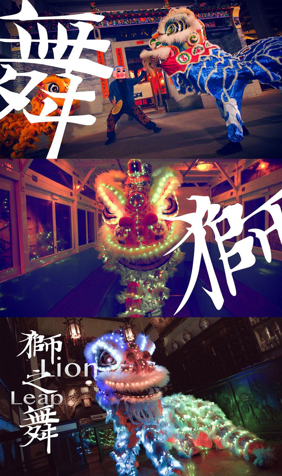 "LCSD X Hong Kong Museum of History ""Liondance"" Banner"
