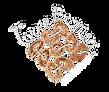 agriturismo-torrebianca-logo.png