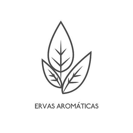 ERVAS-AROMATICAS.jpg