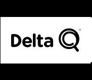 logo_deltaq.png