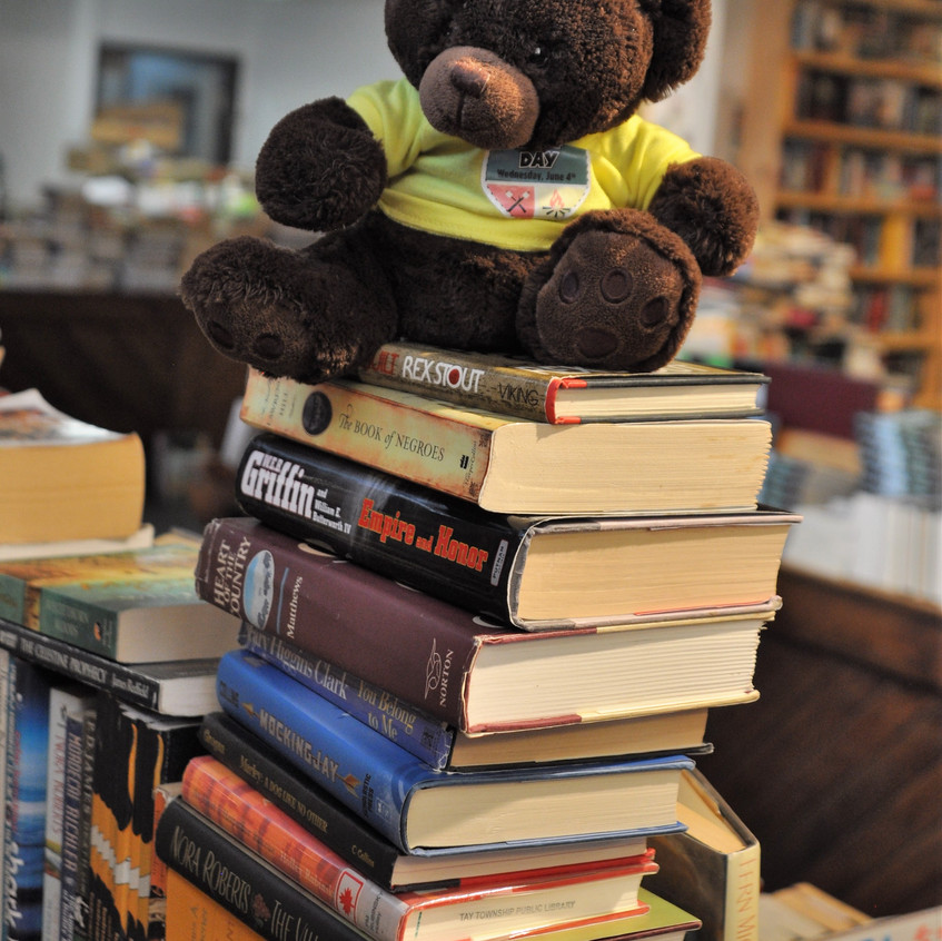 Bearly Used Books bear on stack of books