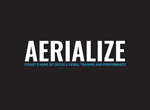 Aerialize Logo black.jpg