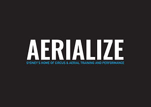 Aerialize Logo black.jpg