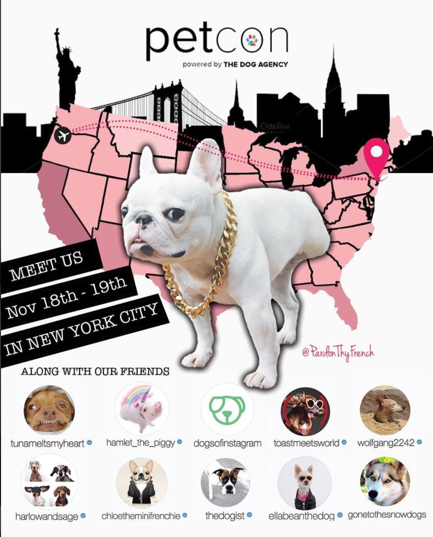 PetCon 2017 NYC