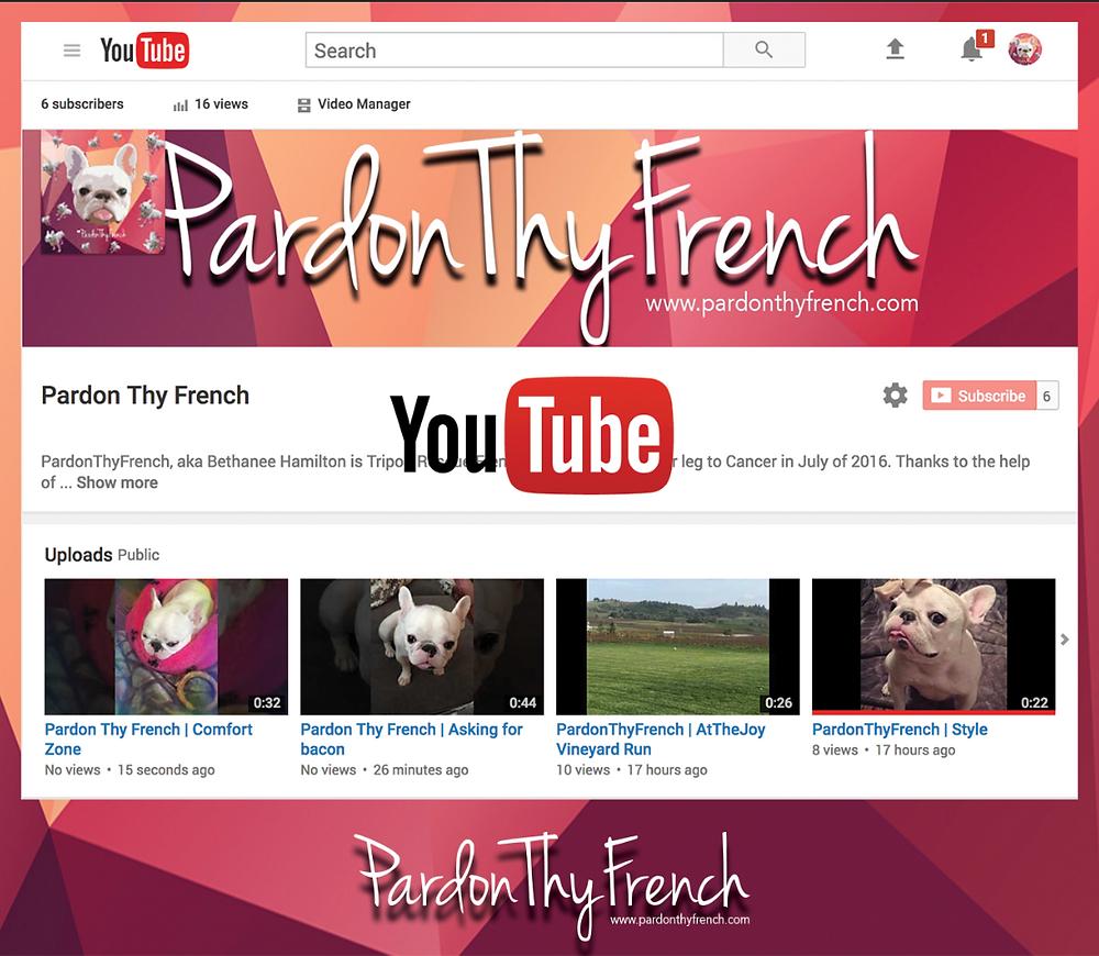Pardon Thy French - Bethanee Hamilton - YouTube