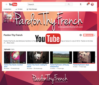 Pardon Thy French | YouTube Channel