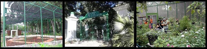 Mariposario Quinta de los Molinos CUBA