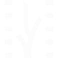 Festival de Cine Latinoamericano 2017