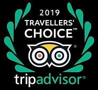 Traveller Choice 2019 logo.JPG