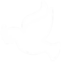 Dove-Icon-white.png