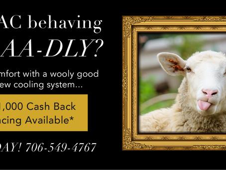 Is Your AC Behaving BAAAAA-DLY?
