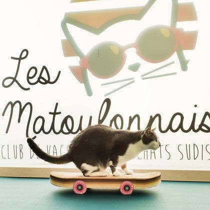 Griffoir pour chat skateboard