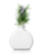 HomePage_Elements_Vase.png