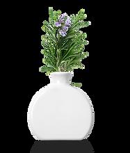 HomePage_Elements_Vase.png