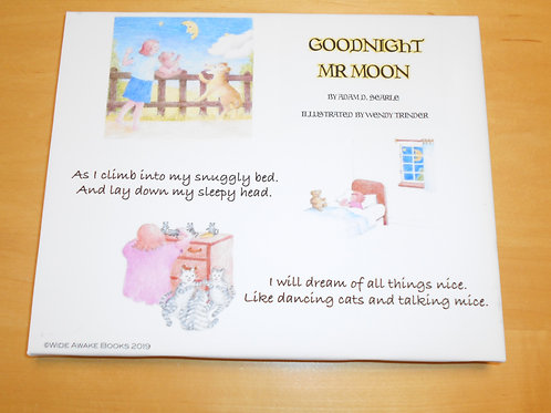 Goodnight Mr Moon Children's Wall Slim Canvas