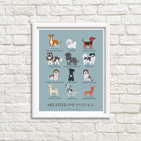 MEDITERRANEAN DOGS art print