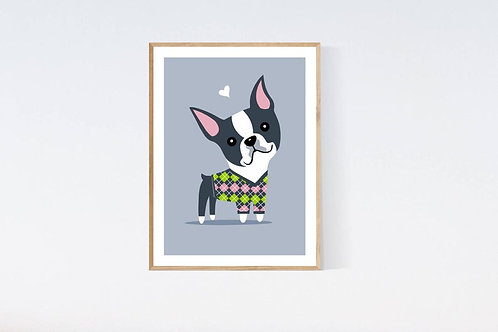Boston Terrier in a sweater - 5x7 print