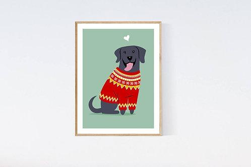Black Labrador Retriever in a sweater - 5x7 print