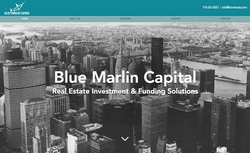 Blue Martin Capital