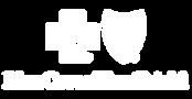 logo-bcbs.png