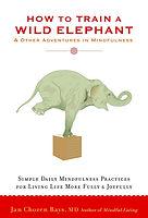 mindfulness - how to train the wild elep