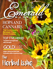 Emerald Magazine Article