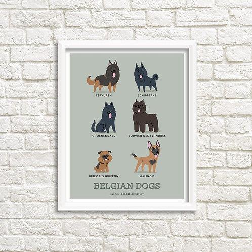 BELGIAN DOGS art print