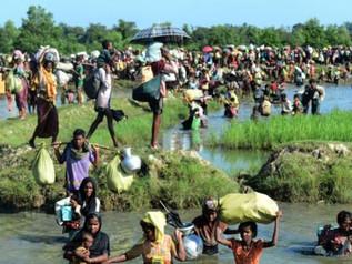 Rohingya Windrush?