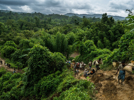 Desperate Rohingya Flee Myanmar on Trail of Suffering: 'It Is All Gone'