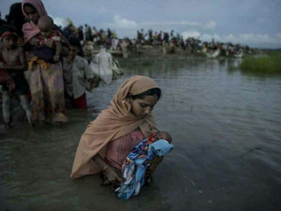 """Rohingya In """"Last Stages Of Genocide"""""""