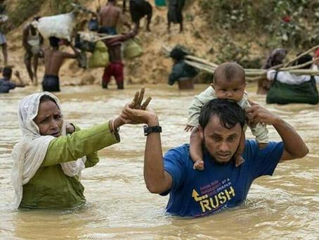 Bela Nasib Rohingya Bukan Hanya Retorik