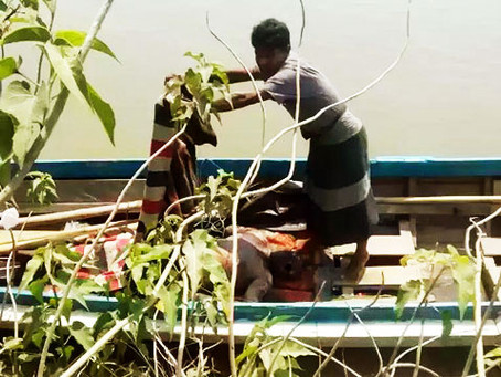 BGP Inhumanely Tortured A Rohingya To Death