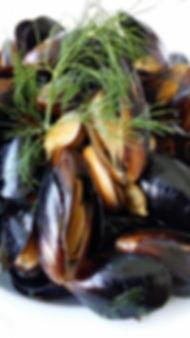 abalone-1813813_1920.jpg