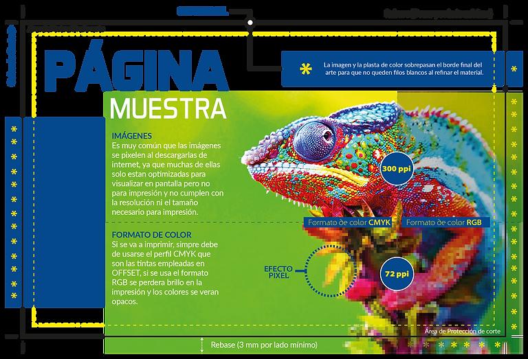 DISEÑO_TIPS_Mesa_de_trabajo_1.png