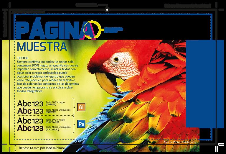 DISEÑO_TIPS_Mesa_de_trabajo_1_copia.png